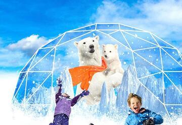 Снежный павильон для детей — Иглу на Арене в Израиле