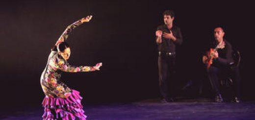 От первого лица — Путешествие к истокам испанского танца — Третья встреча в Израиле