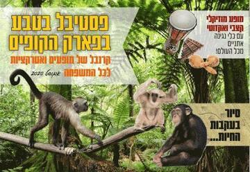 Фестиваль природы в парке обезьян в Израиле