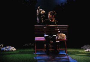 Театр Тмуна — Хорошая собака в Израиле